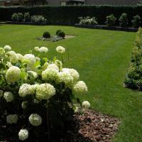 uw droomtuin - aanleg van uw tuin